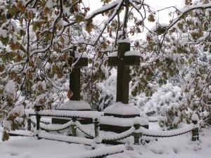 Ryde Cemetery 2 December 2010
