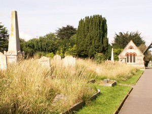 Summer in Ryde Cemetery