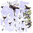 marksfly